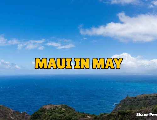 Maui In Maui | What's Maui Hawaii Like In May | Facts & Events